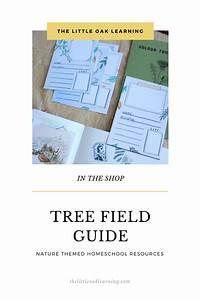 The Tree Field Guide Homeschool Resource In 2020