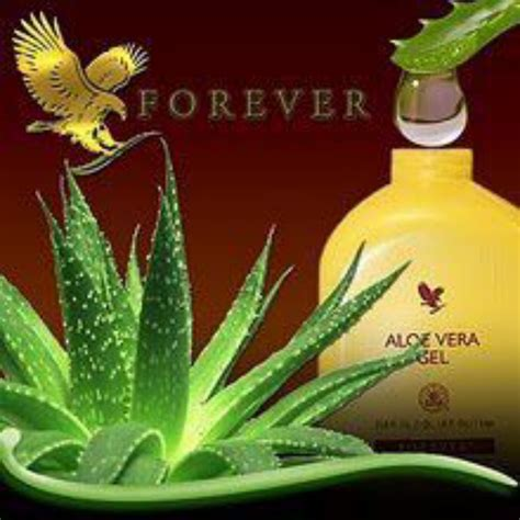 Aloe Vera Beauty Health  Forever Living Products Natural
