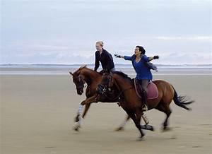 Bilder Von Pferden : kino pferdkultur ~ Frokenaadalensverden.com Haus und Dekorationen