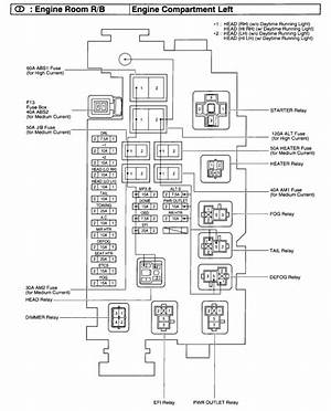1999 Toyota Ta Fuse Diagram 44653 Ciboperlamenteblog It