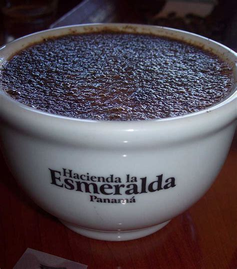 best coffees in the world most expensive coffee machines in the world top ten