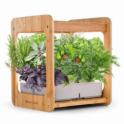 Indoor Herb Grow Garden System Smart Plant
