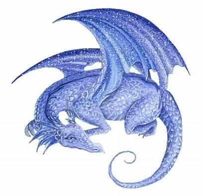 Dragon Amazing Dragons Code