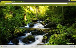 Waterfall in Forest Chrome Theme