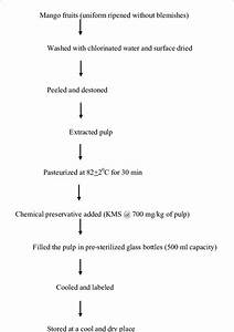 Process Flow Chart For Extraction Of Mango Pulp