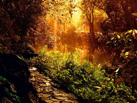 Great nature wallpapers on 1600x1200 resolution - high ...