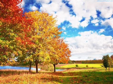 wallpaper: Autumn Season Wallpapers 2