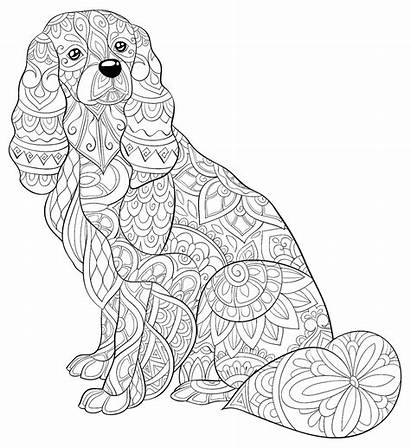 Coloring Dog Pages Printable Dogs Adults Mom