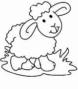Sheep Lamb Coloring Baby Pages Cute Preschool Easter Lambs Cartoon Printable Clipart Animal Print Colouring Getcolorings Drawing Dog Getdrawings Clipartmag sketch template