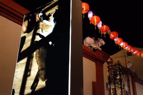 singapore street photography exhibition  chinatown
