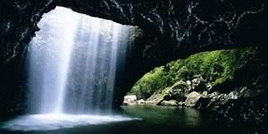 Glow, Worm, Cave, New, Zealand