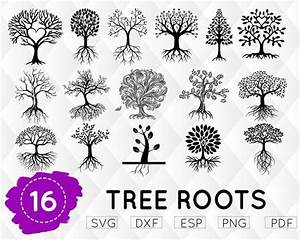 Tree Roots Svg  Family Tree Svg  Roots Svg  Family Svg