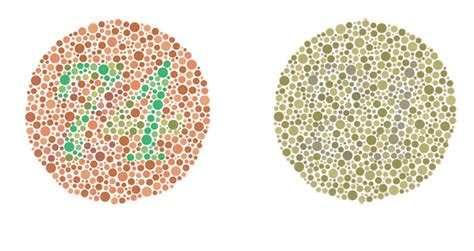 being color blind here s what it s like to be colour blind smooth