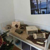 Meerschweinchen Gehege Ikea : offener k fig hamsters and so on pinterest k fig meerschweinchen und meerschweinchen ~ Orissabook.com Haus und Dekorationen
