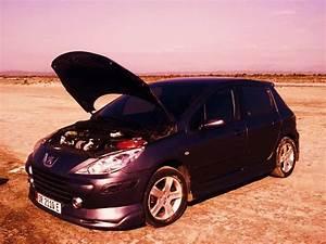 Peugeot Somain : hayri133 2007 peugeot 307 specs photos modification info at cardomain ~ Gottalentnigeria.com Avis de Voitures