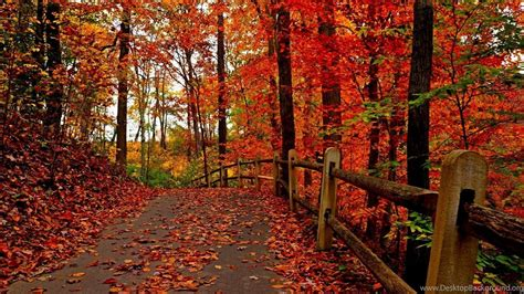 Fall Backgrounds For Desktop Computers by Fall Computer Wallpapers Desktop Backgrounds Desktop