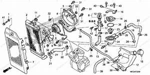 Honda Motorcycle 2009 Oem Parts Diagram For Radiator