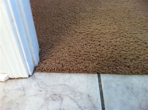 Vinyl Tile To Carpet Transition Strips by Lowes Carpet Transition Strips Meze