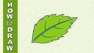 How to Draw a LEAF | Easy Drawing web series | Drawing ...