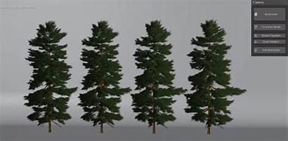 Trees Botaniq Tree Seasons Feature Blender