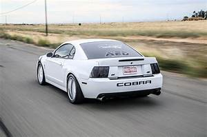 Understated Excellence: Oxford White 2004 Terminator Mustang Cobra - Hot Rod Network