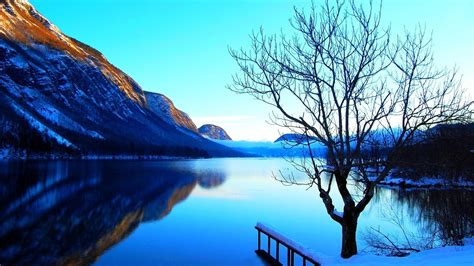 Mountains Landscapes Nature Lone Tree Natural Scenery Pure