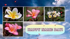 Happy name day! - YouTube