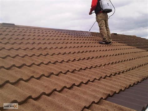 Roof Tile Sealing & Painting