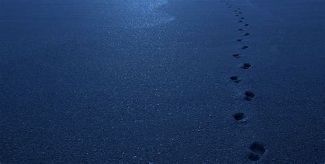 pictures of blue footsteps