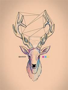 deer draw - Pesquisa Google | inspirações | Pinterest ...