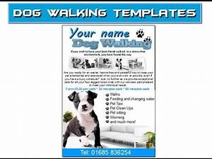 Babysitter Flyer Maker Dog Walking Flyer Leaflets Templates Youtube