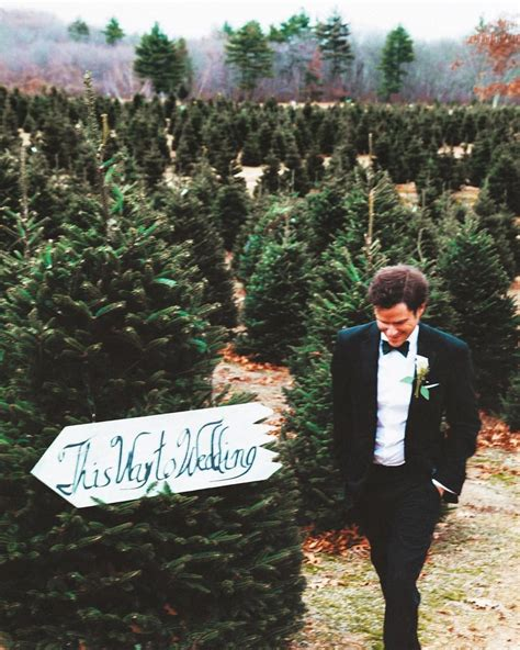 rhode island christmas tree farm tree farm wedding popsugar