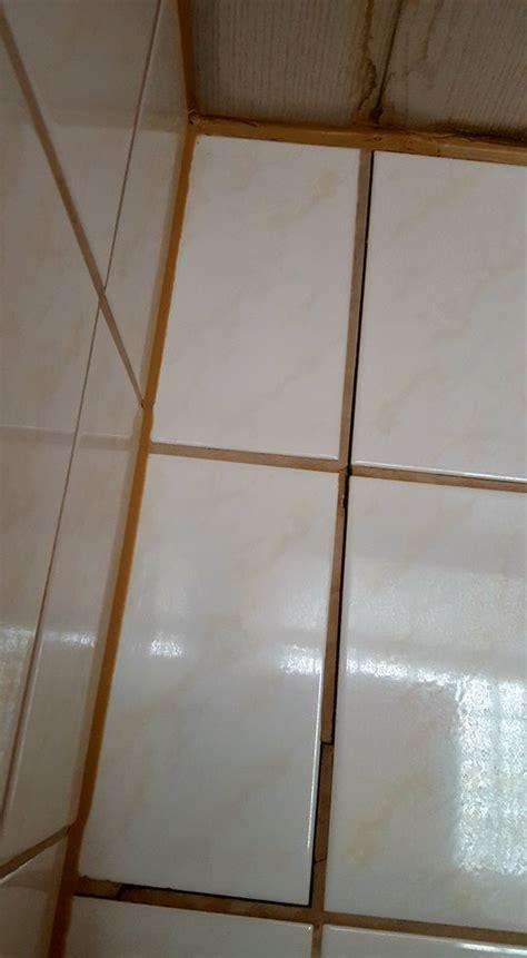 dach undicht mietwohnung dauerhafte mietminderung bei wasserschaden am mietobjekt
