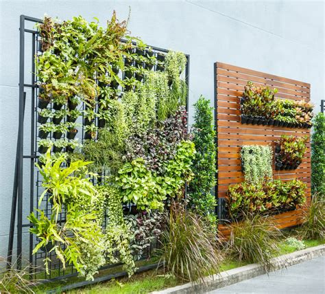 Vertical Garden Systems: Wall Gardening