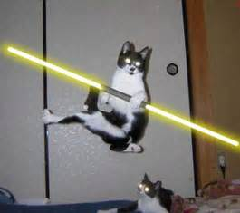 wars cat geeknation wars with cats