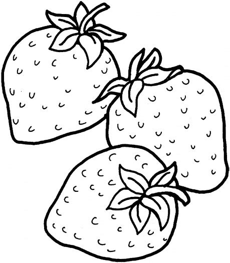 strawberry coloring pages  coloring pages  print
