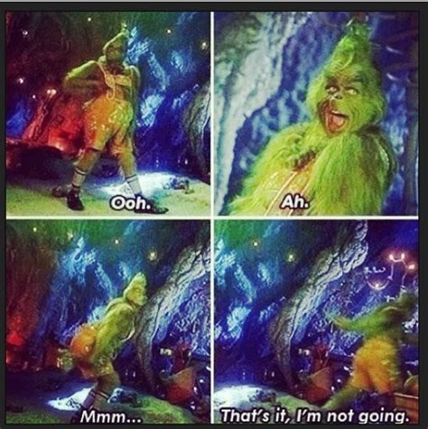 Grinch Memes - 17 best grinch memes images on pinterest books funny funny funny and grinch christmas