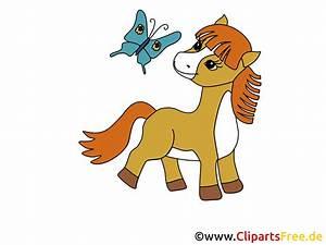 Pony Clipart, Bild, Cartoon gratis  Clipart