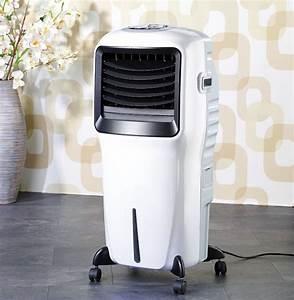 Rafraichisseur D Air Conforama : rafra chisseur d 39 air sur pied avec ioniseur et ~ Dailycaller-alerts.com Idées de Décoration