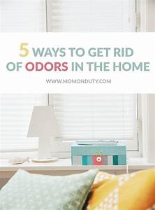 get rid of dog odor in house 28 images get rid of dog With how to get rid of odors in house