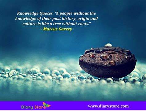Quotes About Knowledge Knowledge Quotes Best Knowledge Quotations Today Diary