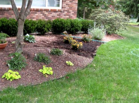simple landscaping ideas image of simple landscape design ideas backyard landscaping designs homelk com