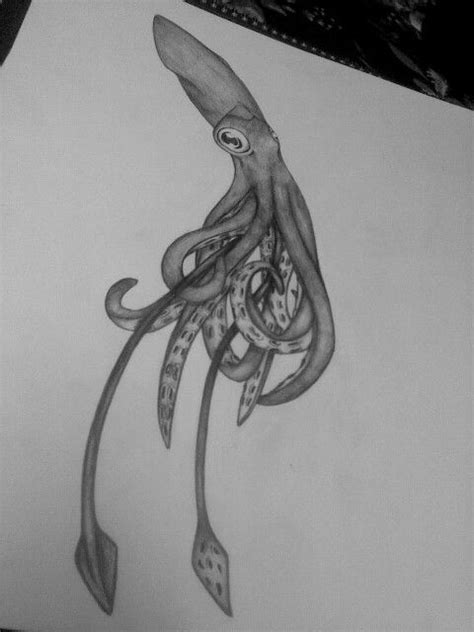 squid drawing squid drawing squid tattoo giant squid
