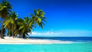 Tropical beach with palm trees beautiful sky blue sea ...