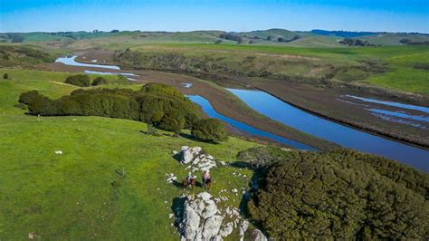 For Sale California by Northern California Cattle Ranches For Sale Cow Land