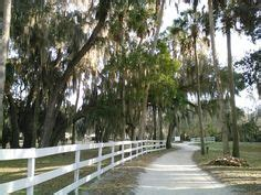 1000 images about gainesville fl alachua county on of florida florida