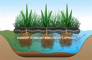 Artificial Floating Islands Clean Water  Attract