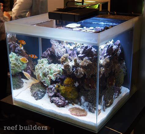 saltwater aquarium all in one innovative marine all in one aquarium saltwater fish tank 38 gal