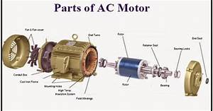 Introduction To Three Phase And Single Phase Induction Motors