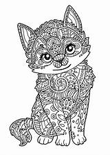 Coloring Pages Cat Animals Mandala Animal Printable Dog Adult Zoo Kitten Cats Kitty sketch template